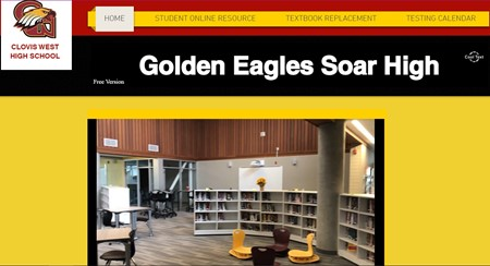 Pic of Library website
